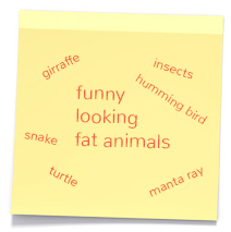 Funny looking fat animals